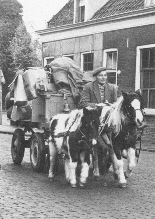 Willem Hoefnagel 1960