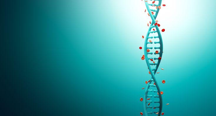 Rumah Sakit Kanker dengan Metode Pengobatan Target Gen Biologis  #Rumah #Sakit #Kanker http://gejalakankertumor.com/infokanker/rumah-sakit-kanker-dengan-metode-pengobatan-target-gen-biologis/