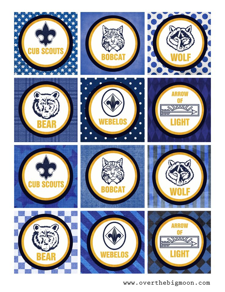 Cub Scout Cake Toppers