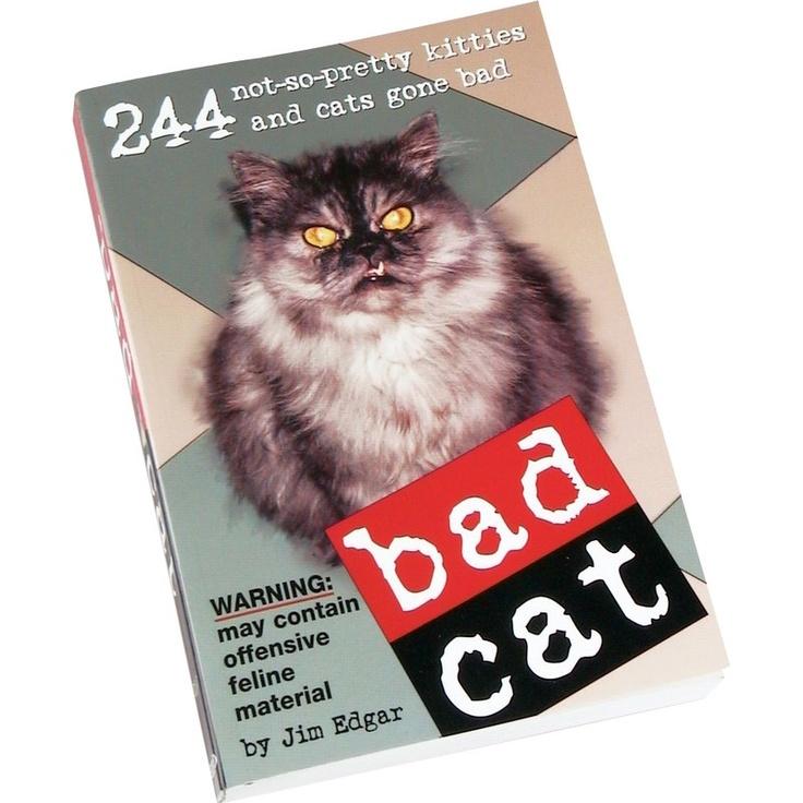 BO Bad Cat | Hawkins Bazaar
