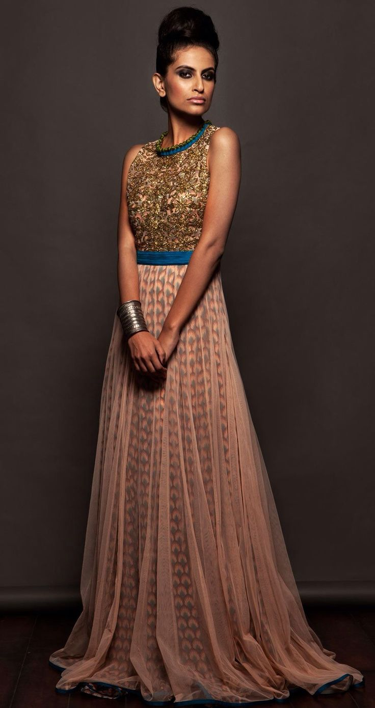 Gorgeous Indian Sheer and Sparkle Dress. Indian Fashion. Indian Dress
