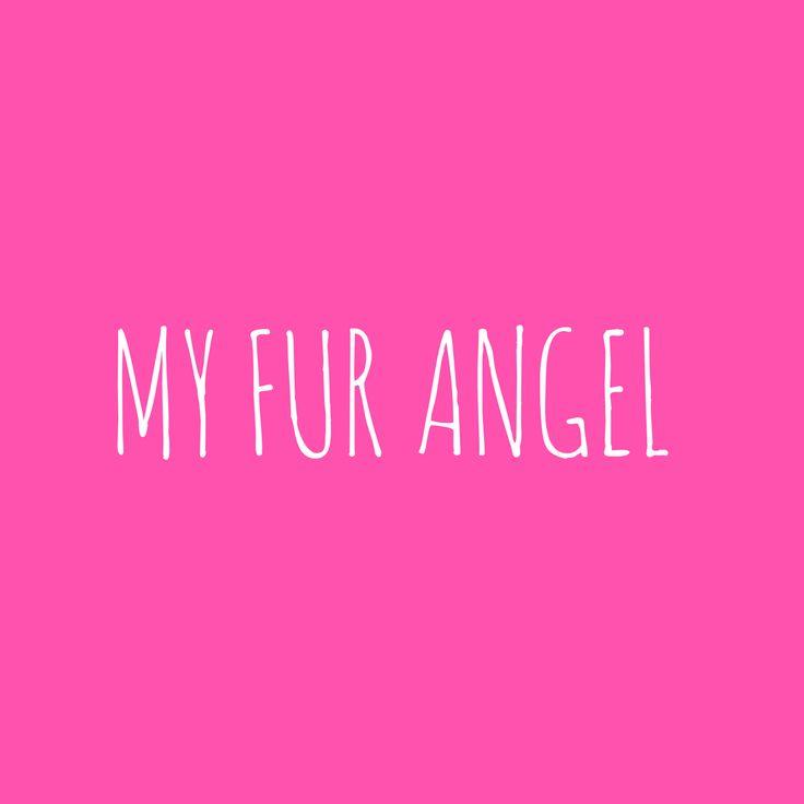 Fur angel