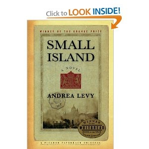 Really goodLibraries, Worth Reading, Book Lists, Small Islands, Book Worth, Novels Written, Andrea Levis, Reading Lists, Book Jackets