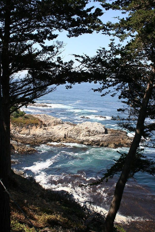 Coastline between Carmel and Monterey, California