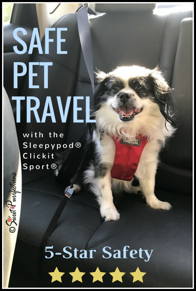 Sleepypod® Clickit Sport® dog harness.  It's safe, comfortable, and sporty. Visit our site for more information. #sponsored
