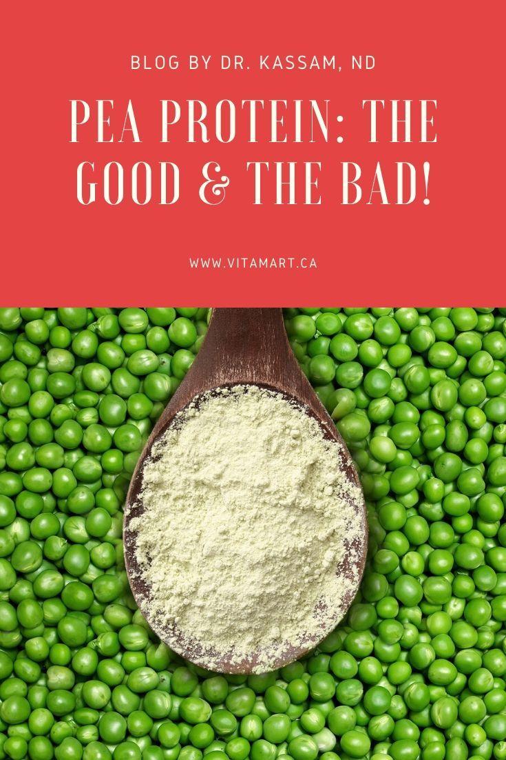 All About Pea Protein Pea Protein Protein Peas