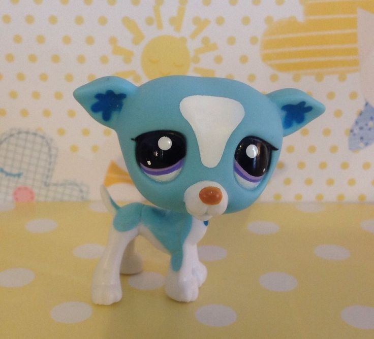 Littlest Pet Shop #2526 White And Blue Greyhound Dog