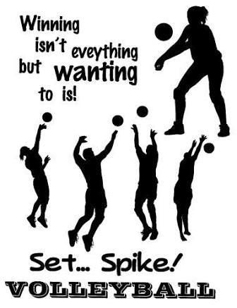 Image result for volleyball quotes