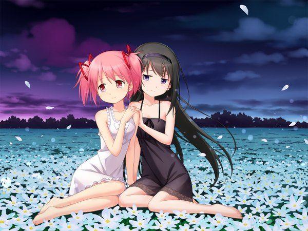 Аниме картинка  1280x960 с   девочка-волшебница мадока магика  shaft (studio)  akemi homura  kaname madoka  tucana  длинные волосы  короткие волосы  чёрные волосы  красные глаза  два хвостика  несколько девушек  фиолетовые глаза  розовые волосы  небо  облако (облака)  ночь  два хвостика (короткие)  платье  цветок (цветы)  2 девушки