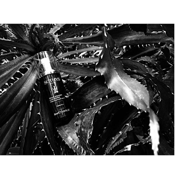 SERUM JEUNESSE - perfekte Kontur. Das cremige Serum mit hautverfeinernden und -liftenden Wirkstoffen wie Marinen Oligosacchariden, Extrakt aus der Bitterorange, Zucker aus Maniok und Peptiden M3.0 definiert das Gesichtsoval neu und hilft, seine Konturen zu erhalten und das Dekolleté zu glätten. Das Gesicht findet zu seiner formvollendeten V-Form zurück. Für ein optimales Ergebnis empfiehlt sich die spezielle Auftragetechnik von den Wangenknochen bis zum Dekolleté. #BeautyAndStyleHamburg…