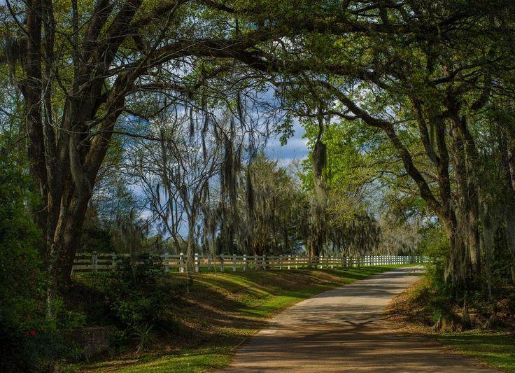 St. Francisville, Louisiana | Population: 1,700