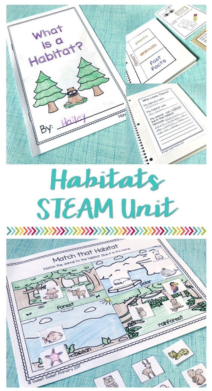 Two weeks of habitat lesson plans and activities! Students learn about different habitats, create a habitat, and justify if a given animal could survive in that habitat. These science stations are just right for first grade, second grade, and third grade.