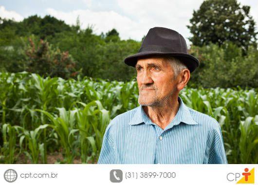 Controle das principais pragas do milho #milho #pragasdomilho #cursoscpt