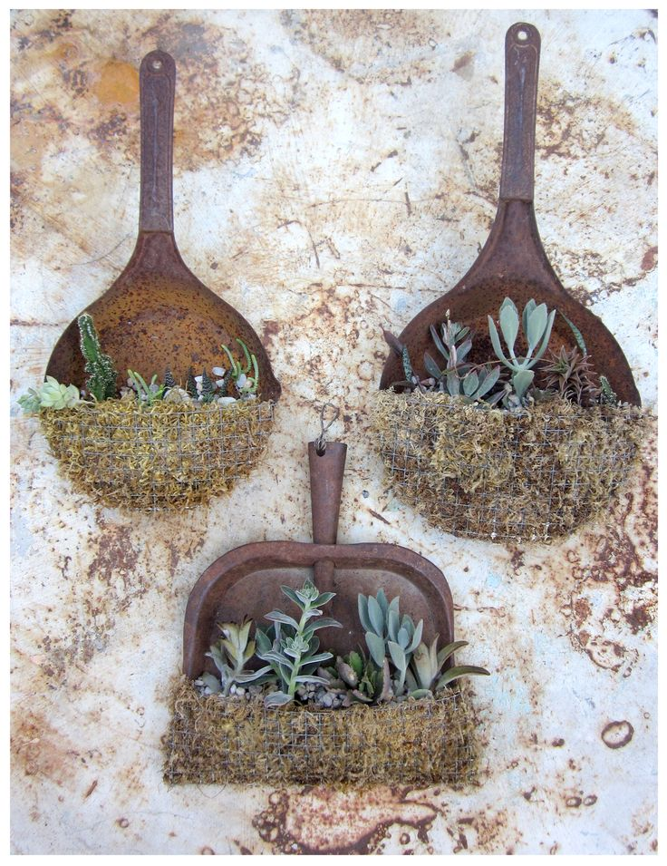 Two ol' skillets and a dustpan have become homey, rustic, container gardens. By Vickie Perez via the blog 'rancho reubidoux'.