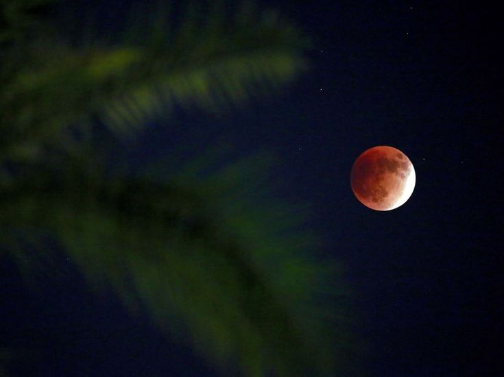 Galerie photo - Eclipse de Lune - Super Blood Moon