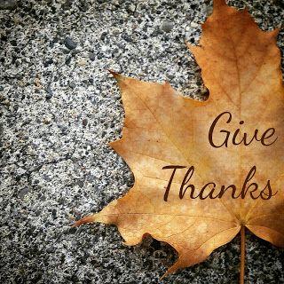 Set Apart for More: The Discipline of Gratitude