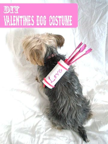 Easy DIY Valentine's Dog Costume... also a cute craft for the kids to do.