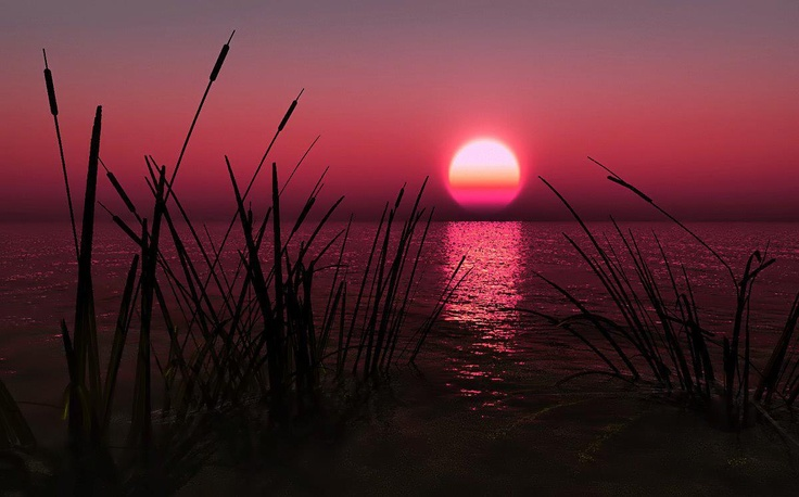 #zonsondergang