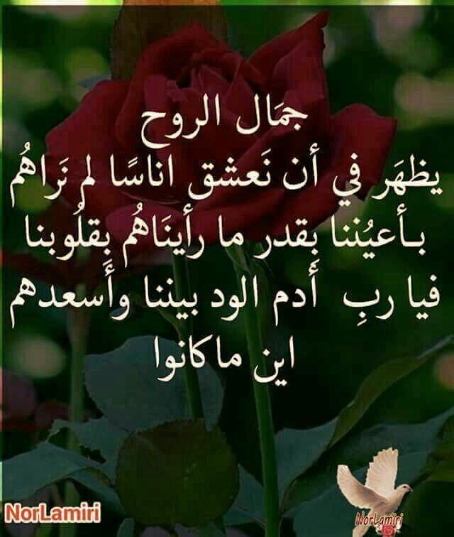 نعم إنه جمال الروح آمين إسعد قلوبهم ياااااارب Morning Quotes Islamic Quotes True Words