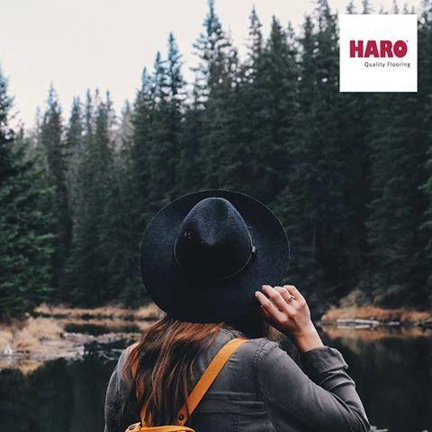 Haro padló  A vadonban: Egy séta az erdőben jótékony hatássokkal jár az egészségre. Az erdei levegő, például növeli a vérkeringésedet.   www.dreamfloor.hu  #padló #haro