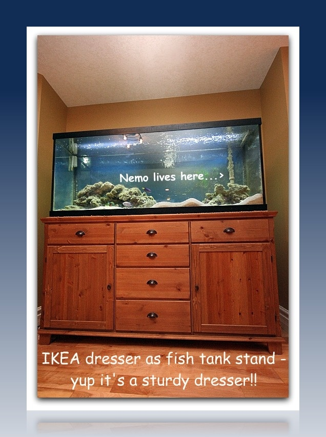 Alternate Ikea Uses: Cabinet As A Fish Tank Stand