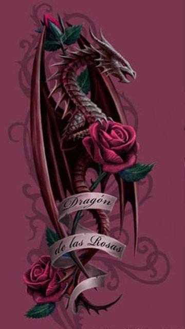 Дракон и роза картинки