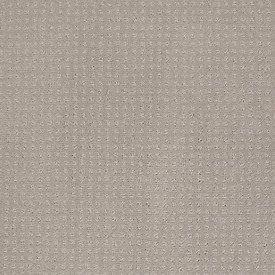 87 Best Shaw Anso Nylon Carpet Images On Pinterest