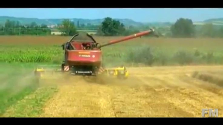 Wheat Harvest in Austria 2011. !FM!.