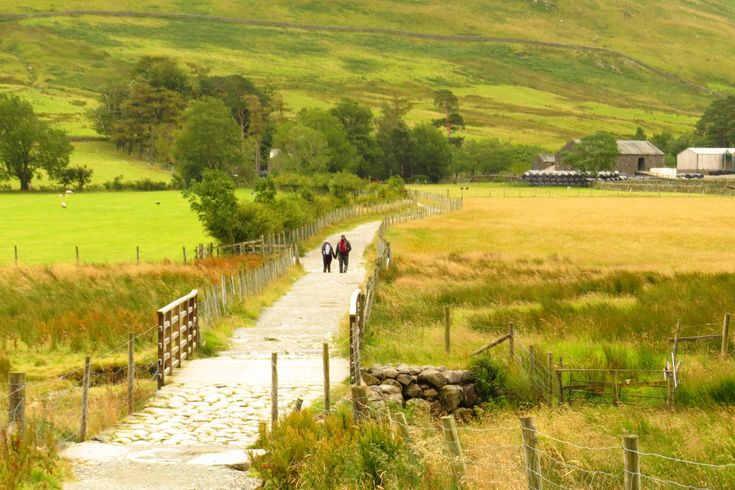 The Lake District offers an enormous variety of walks. Image by Will Jones / Lonely Planet