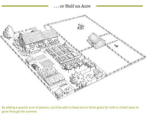 "One Acre Homestead Plan | From ""The Backyard Homestead"" - 1/2 acre homestead :-D"