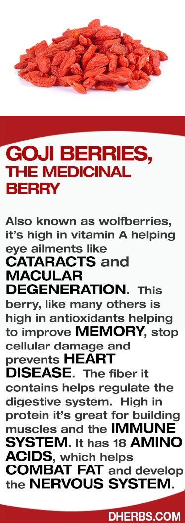 Goji Berries, The medicinal berry Also known as wolfberries, it's high in vitamin A helping eye ailments like CATARACTS and MACULAR DEGENERATION.  This berry, like many others is high in antioxidants helping to improve MEMORY, stop cellular damage and prevents HEART DISEASE.  The fiber it contains helps regulate the digestive system.  High in protein it's great for building muscles and the IMMUNE SYSTEM. It has 18 AMINO ACIDS, which helps COMBAT FAT and develop the NERVOUS SYSTEM.  #Dherbs