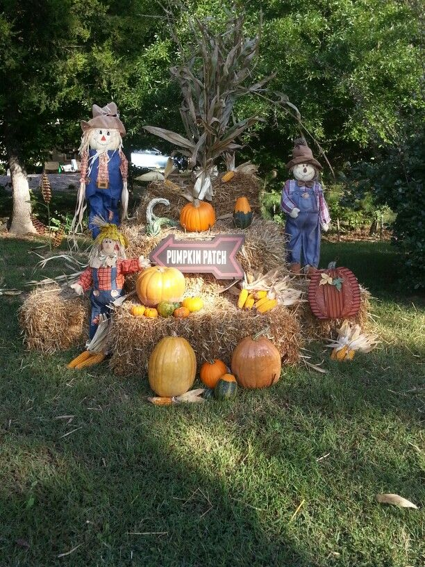 Fall yard art!