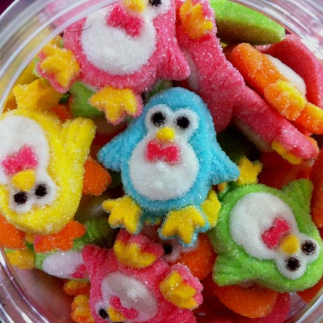 Colorful penguins!..