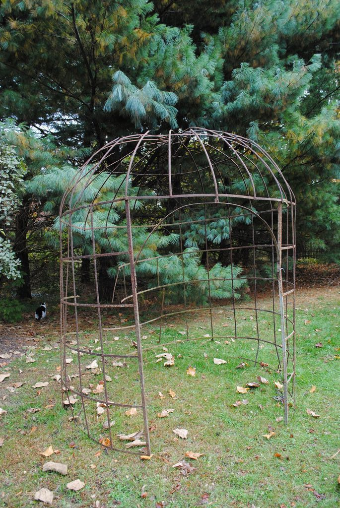 17 best images about iron trellis wisteria on pinterest for French style gazebo
