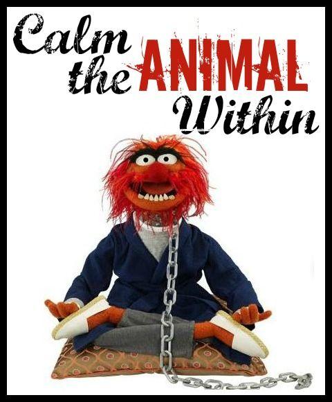 Muppet Quotes Muppetquotes