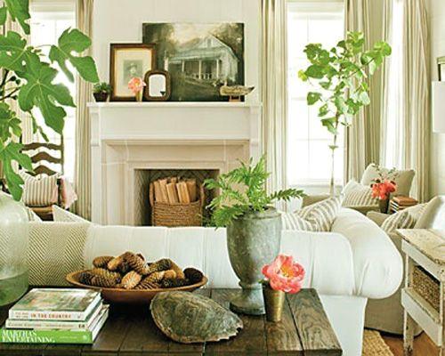 Decorar con plantas salas living rooms pinterest for Decoracion de casas 1 planta