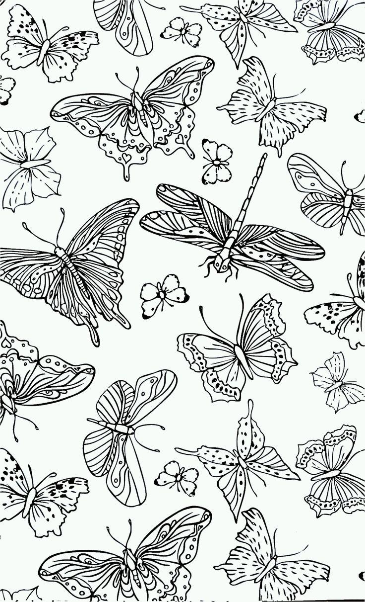vlinders kleurplaten volwassenen