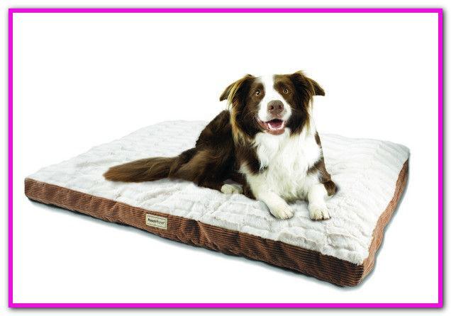 Poochplanet Dog Bed Sams Club Dog Bed Extra Large Dog Bed Dog