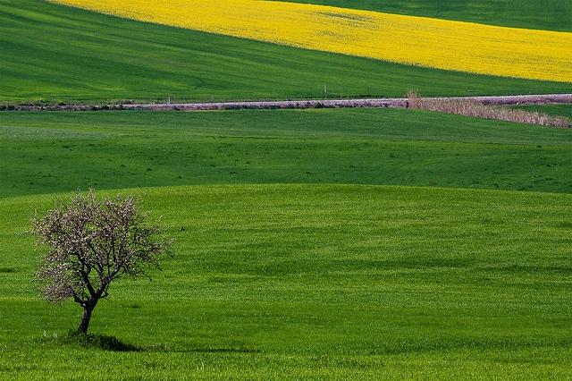 Bellissima #photo di AngeloChiariello, via Flickr