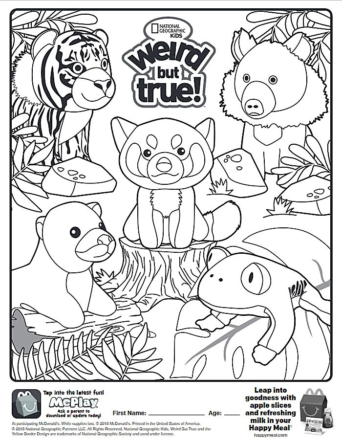 Here Is The Happy Meal National Geographic Coloring Page Click