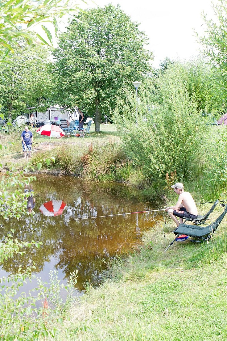 foto's van de fotograaf in 2012 op de camping