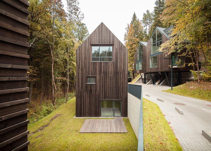 Gallery - Housing Development Rasu Namai / Paleko Arch Studija + PLAZMA - 6