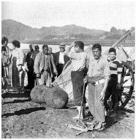 A tapu relic at Mokau Heads: Maoris of Ngati-Maniapoto tribe transferring the Punga-o-Tainui from the beach to the tribal burial-place. [From a photo, 1926