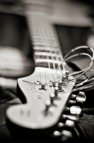 Go here to see how to Learn to ply a Guitar -- http://shorl.com/tajusumufepri