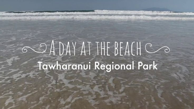 Tawharanui is the jewel in the glittering Auckland Regional Park crown with white sand beaches, rolling hills and regenerating native coastal forest. And at under 90 minutes from Auckland City, Tawharanui is a great day trip.