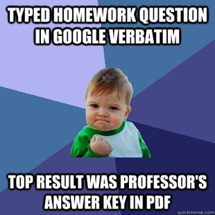 I absolutely love the Success Kid meme.