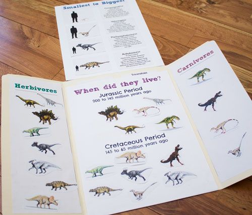 Dinosaur Cards and Lap Book - ResearchParent.com