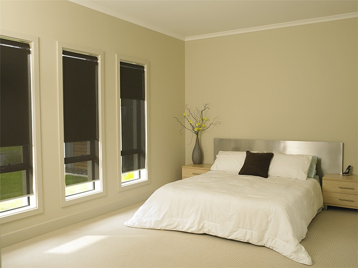 Double rollers, blockout blind clossest to the glass and the sunscreen fabric on the internal side.
