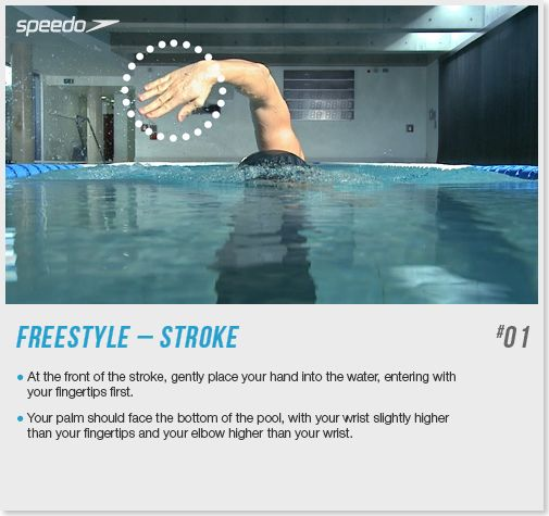 64 Best Swimming Technique Tips Images On Pinterest Competitive Swimming Swim Technique And
