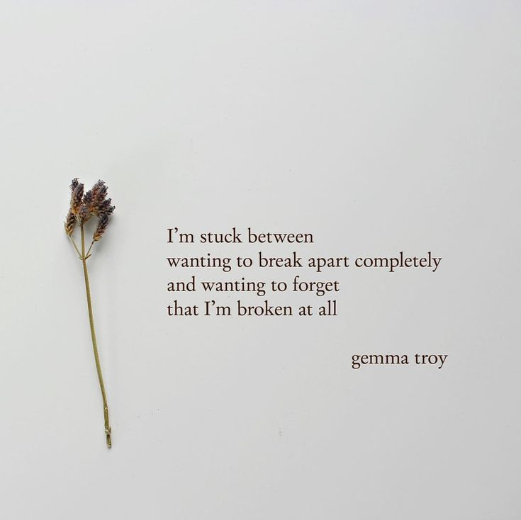 "600 Likes, 12 Comments - Gemma Troy Poetry (@gemmatroypoetry) on Instagram: ""Thank you for reading my poetry and quotes. I try to post new poems and words about love, life,…"""